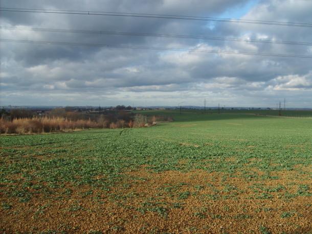 Free photo: Field in Czech republic
