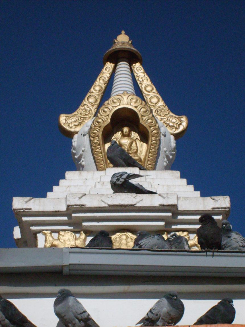Free photo: Buddhist stupa and pigeons
