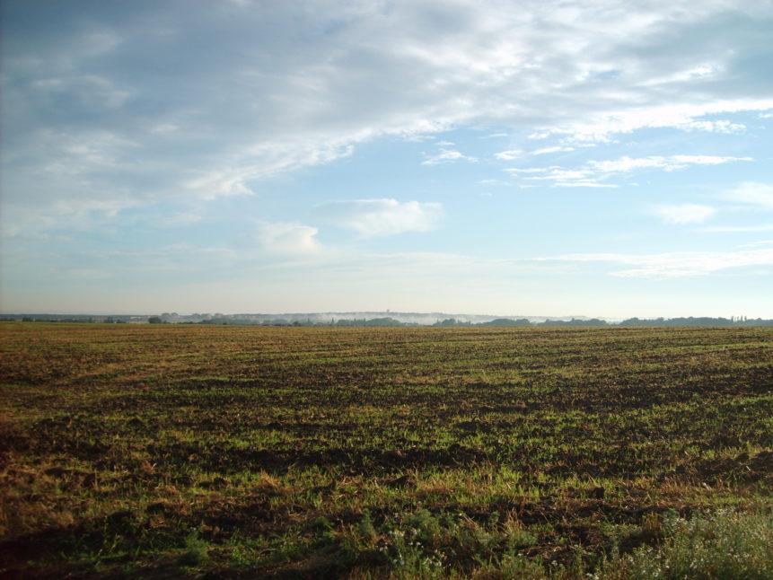 Free photo: Czech field in autmn