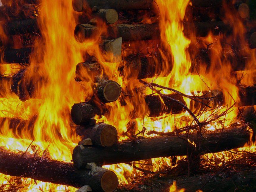 Free photo: Burning wood