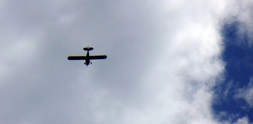 Free photo: Plane on Sky