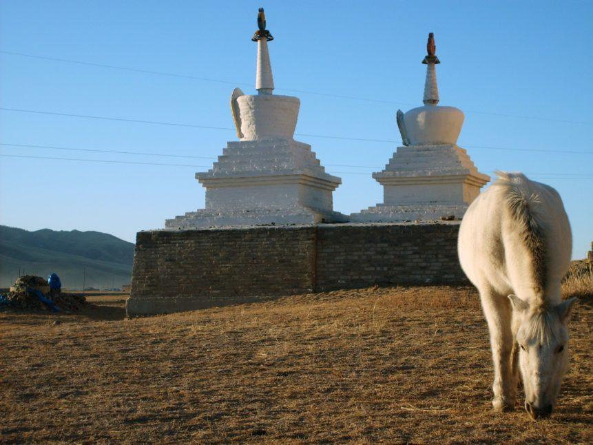 Free photo: White Horse Buddha