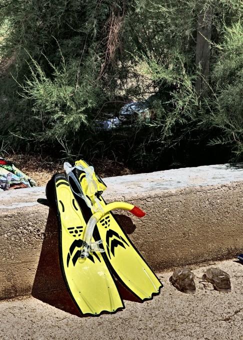 Free photo: Snorkeling Equipment