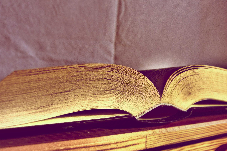 free image open book libreshot public domain photos