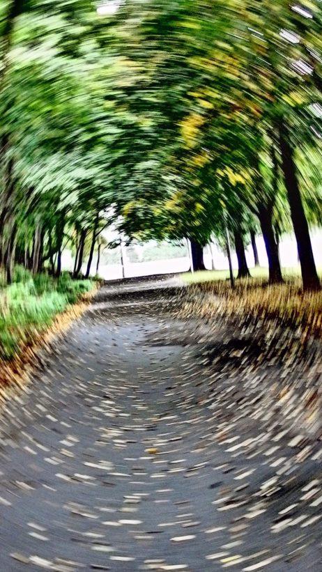Spinning Walkway