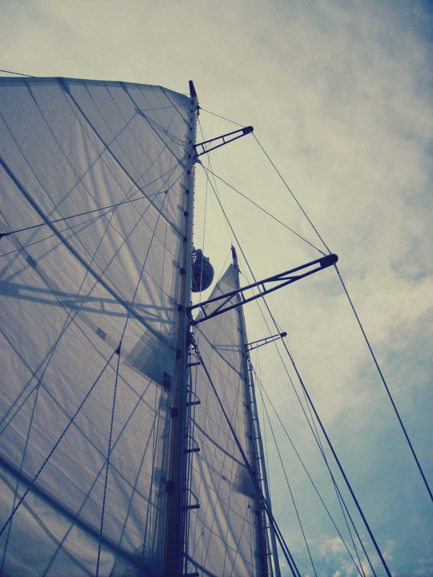 Free photo: Sails