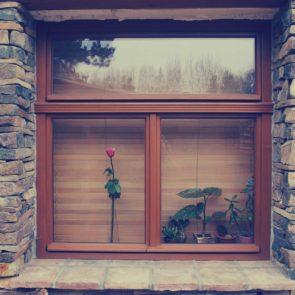 Free photo: Window