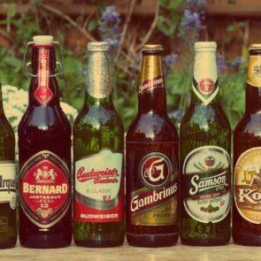 Free photo: Beer Bottles