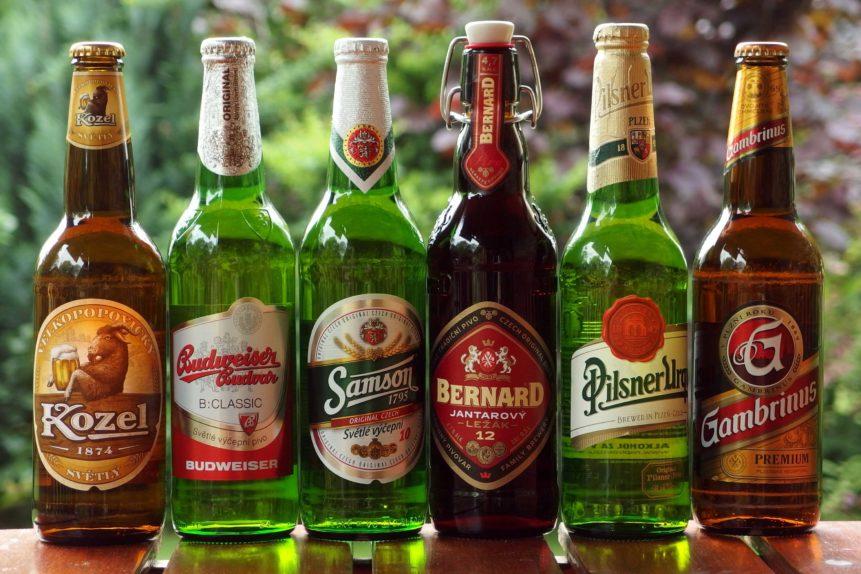 Free photo: Czech  Beer
