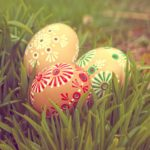 Free photo: Grass and Eggs