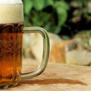 Free photo: Pint of Beer