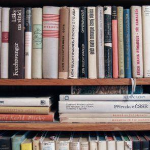 Free photo: Bookshelf