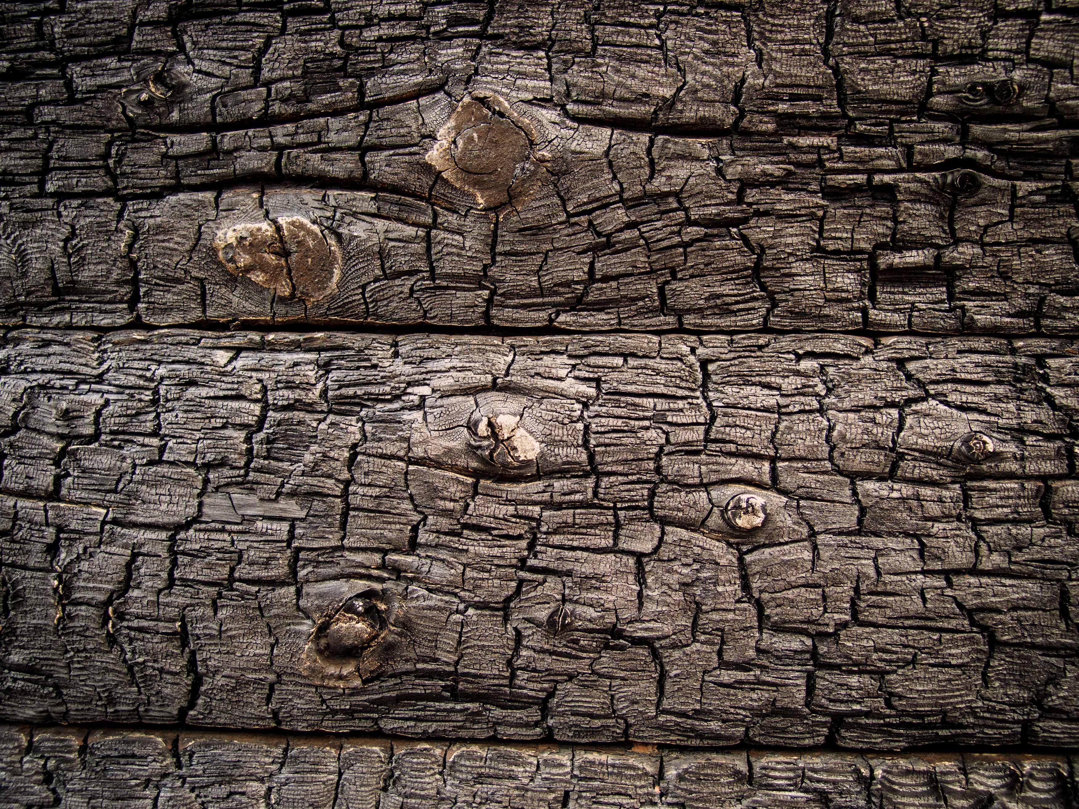 Burnt Wood Texture Free Stock Photos Libreshot