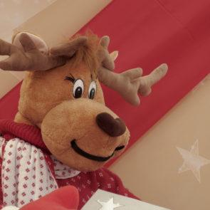 Christmas Reindeer   Free Stock Photo