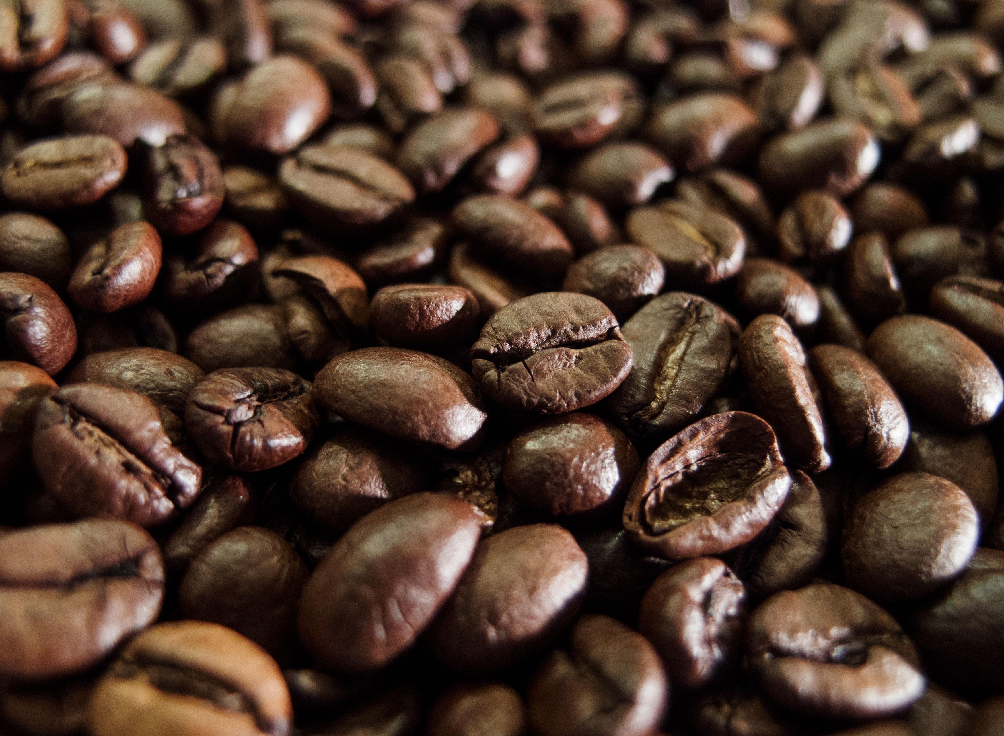 Coffee Beans Free Stock Photos Libreshot