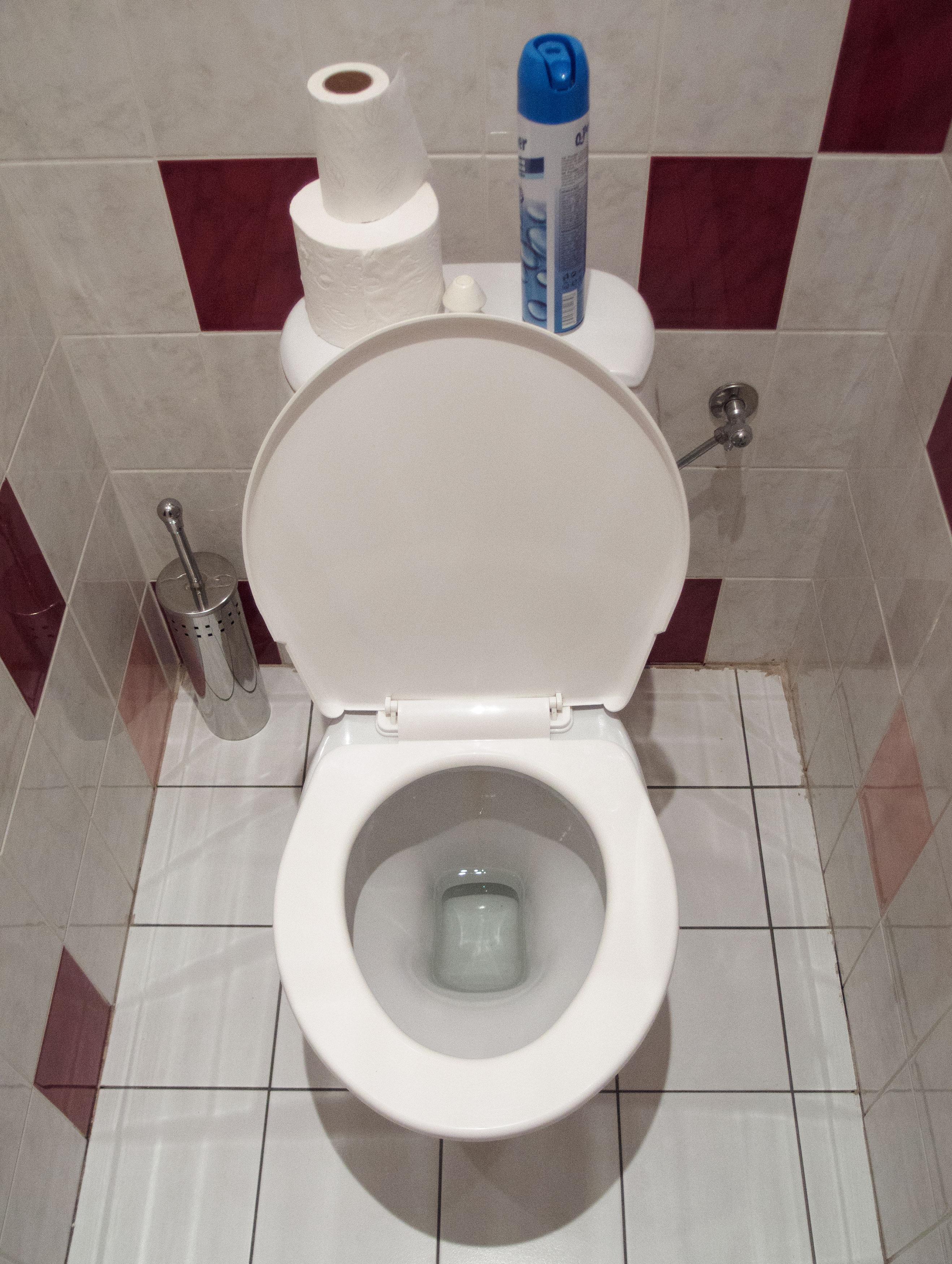Free Image White Toilet Bowl Libreshot Public Domain Photos