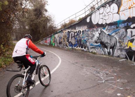 Cyclist With Graffiti Wall