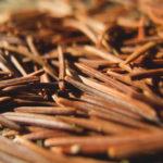 Pine Needles On The Ground