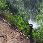 Lawn Sprinkler Watering System