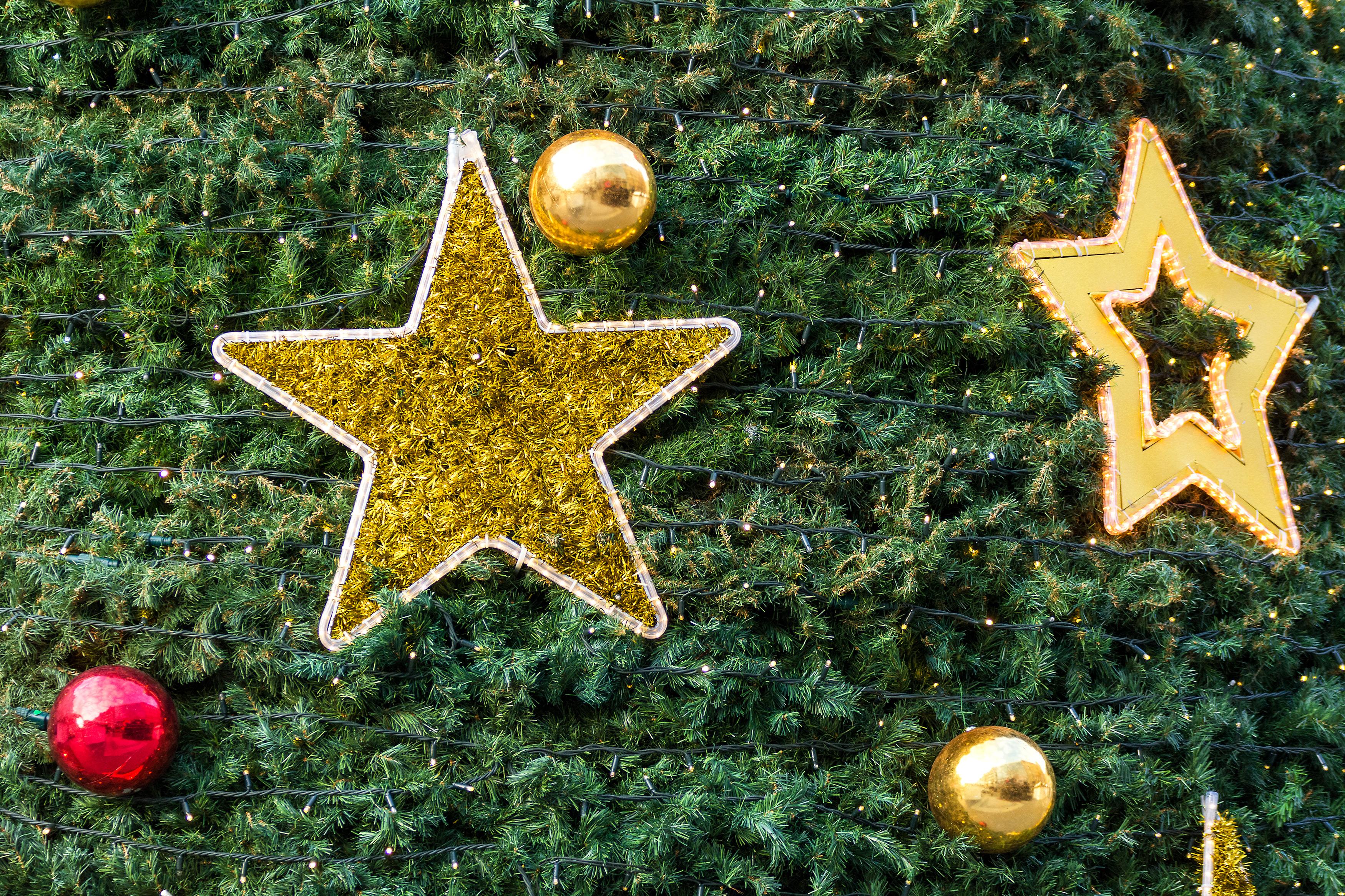 FREE IMAGE: Christmas Stars - Libreshot Public Domain Photos