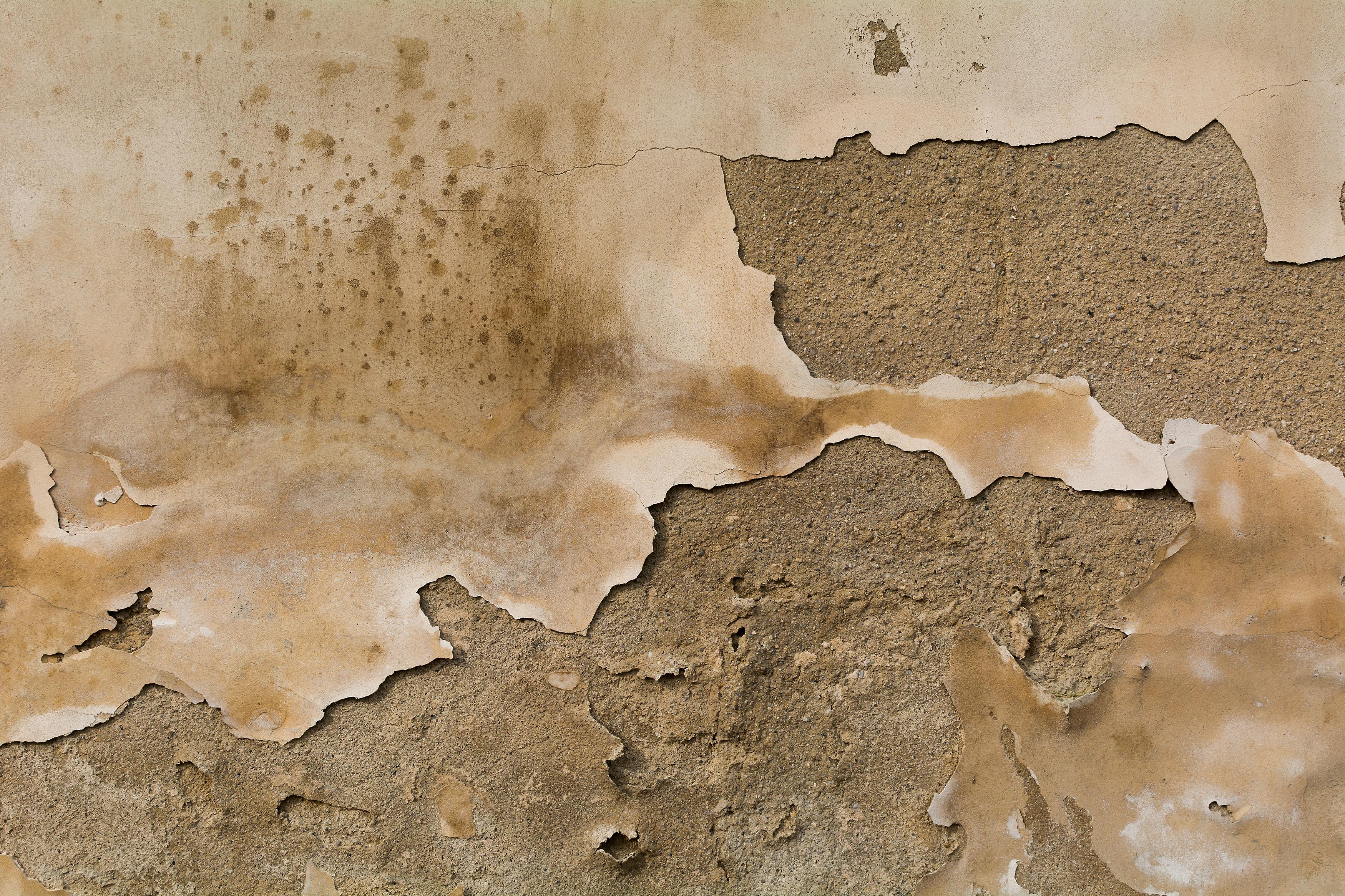 free image old wall texture libreshot public domain photos