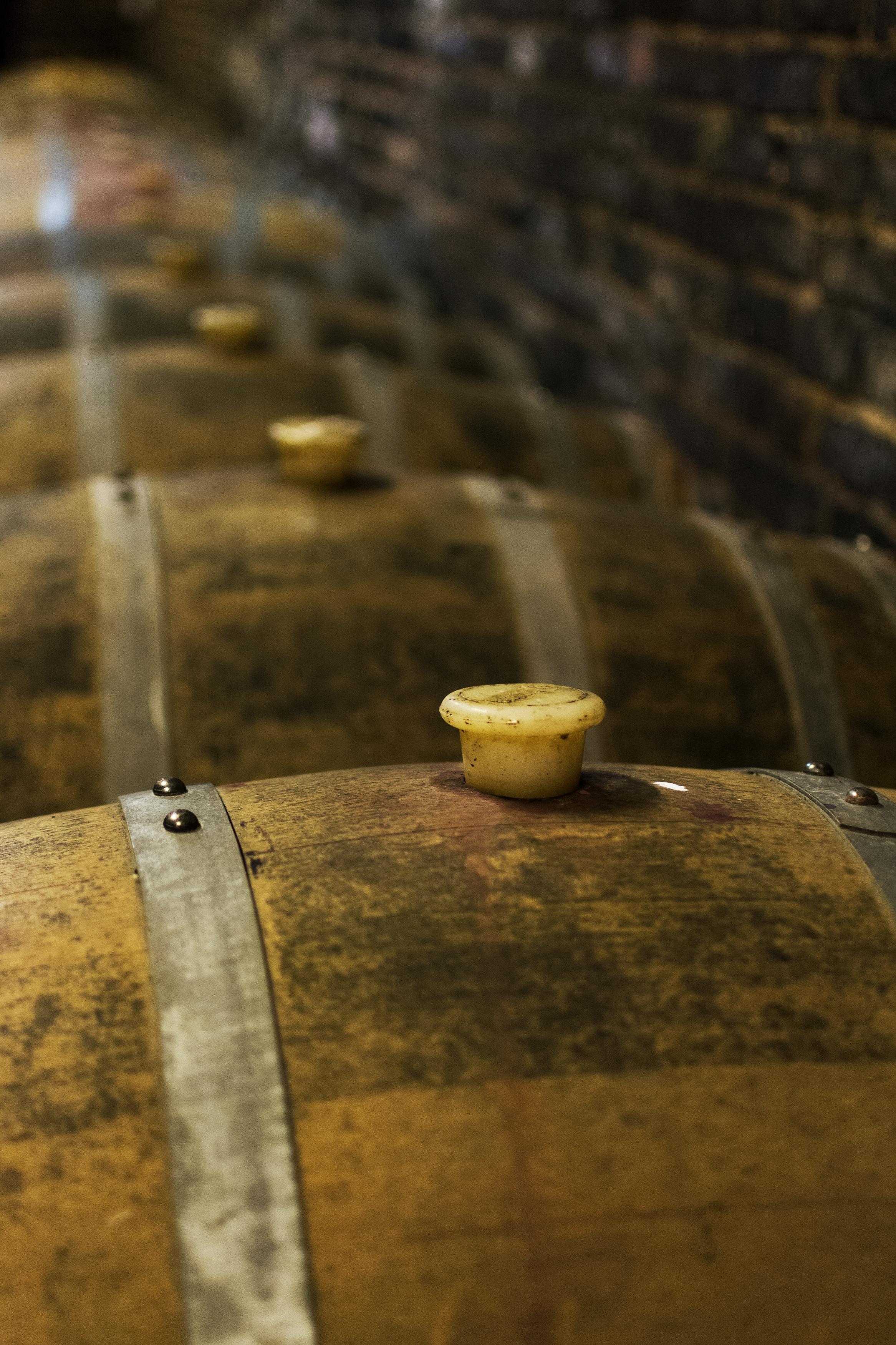 Oak wine barrels Small Free Download Full Size Trellis Creative Free Image Oak Wine Barrels Libreshot Public Domain Photos
