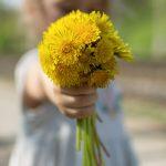 FREE IMAGE: Bouquet of Flowers - Libreshot Public Domain ...